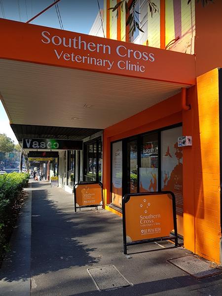 Southern Cross Vet